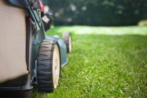 Lawn Maintenance Pittsburgh
